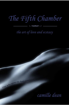 the-fifth-chamber